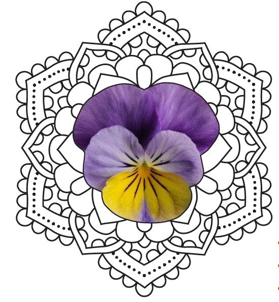 Women's Spiritual Garden Graphic